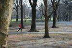 jogging à Central Park le Jour de Noël 2012
