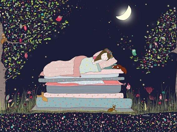 ameliebiggslaffaiteur_princessepetitpois_nuit