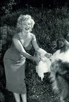 1952_niagara_party_lassie_0012136