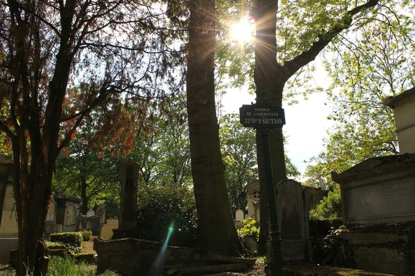 pere-lachaise-claracircus17