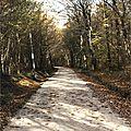 Blanquet, jarijoux, route napoleon