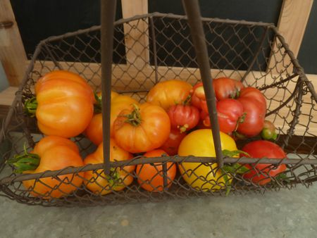05-récolte serre du jour (3)