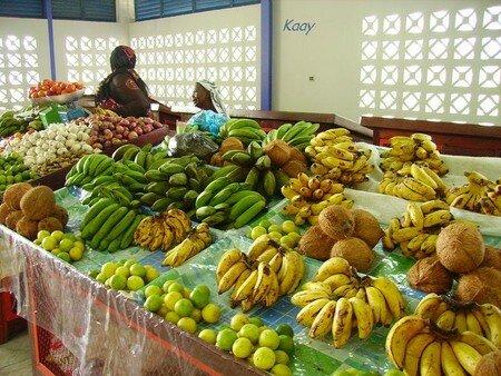 les_fruits