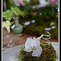 Table jardin romantique ( jour j)