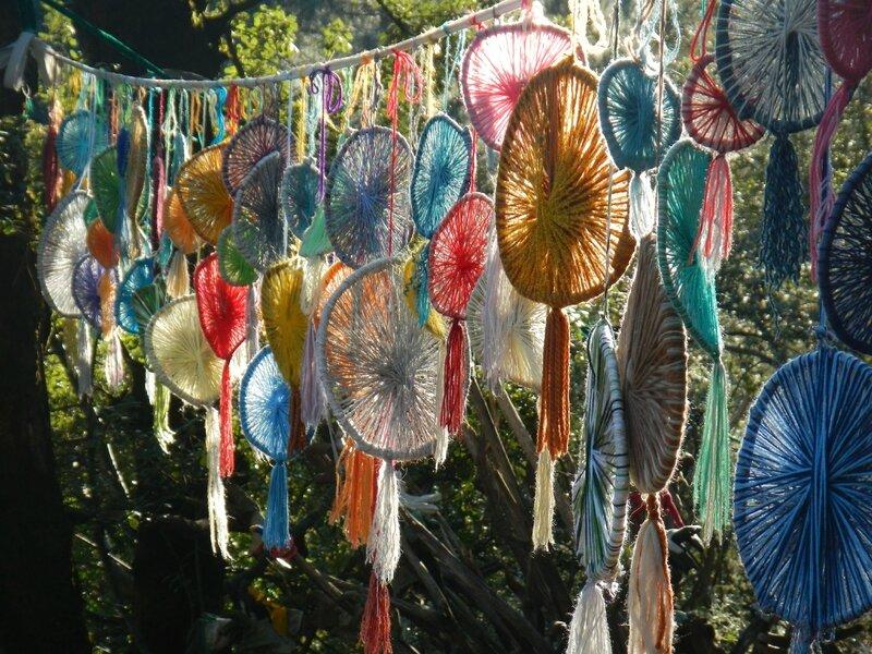 soleils multicolores suspendus dans la forêt