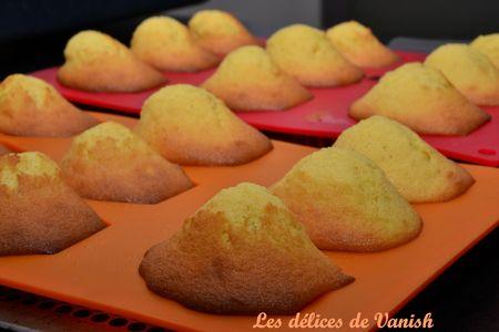 madeleine - popotte gourmande - concours -