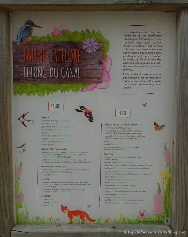 info faune