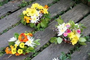 d_co_florales_002