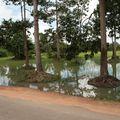 thailand chang mai cambodge kohchang 402