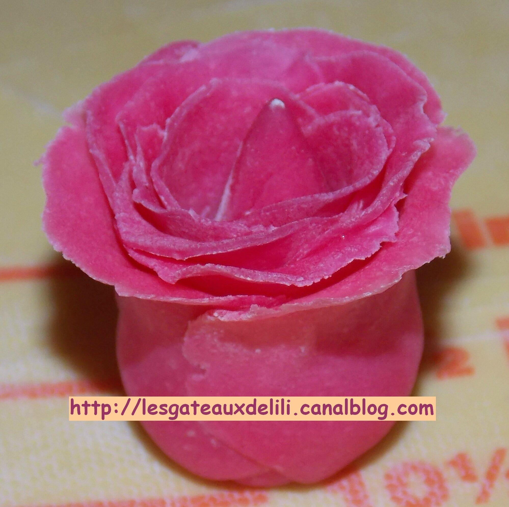 2014 01 10 - Modelage rose (11)