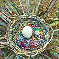 bouts de laine largués dans le nid yurtao