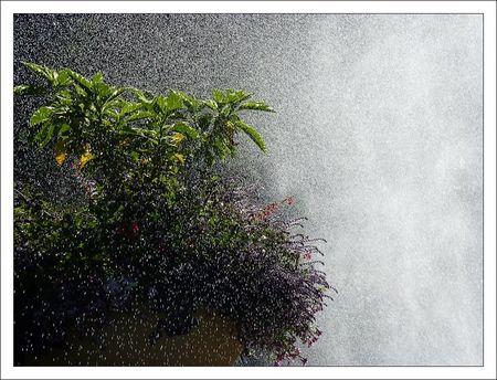 Loches_jardin_arrosage_2