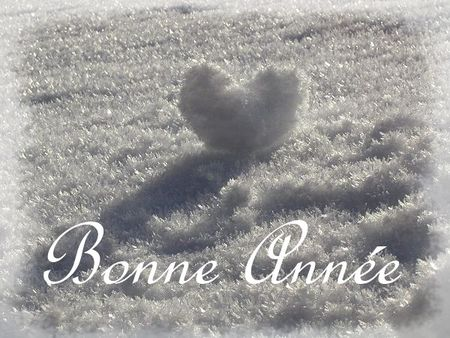 coeur_neige_2009_voeux