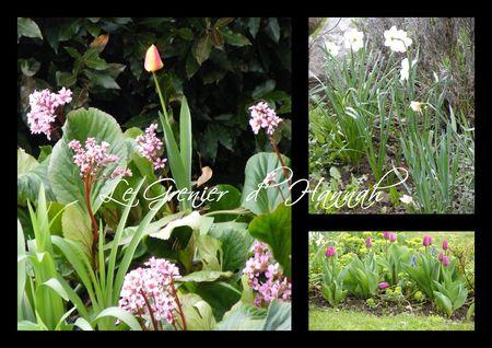 fleurs_jardin_avril_2012