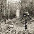 Au détour d'un chemin Vosgien… hommage aux soldats