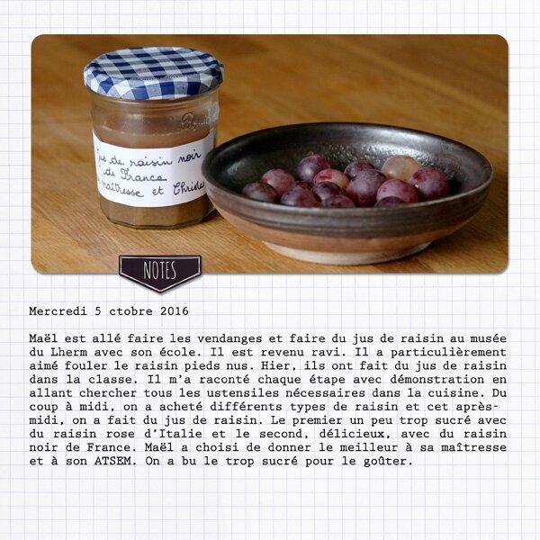 16-10 le jus de raisin b