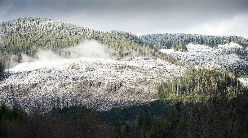 Gordon_River_Big_Cut_Snow-3