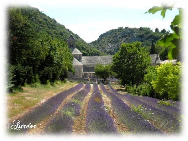 Abbaye_de_Senaque