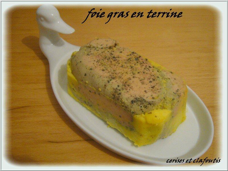 cuisson foie gras mi cuit en terrine. Black Bedroom Furniture Sets. Home Design Ideas
