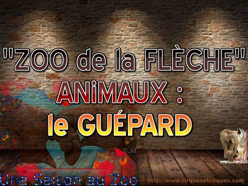 _ le GUÉPARD