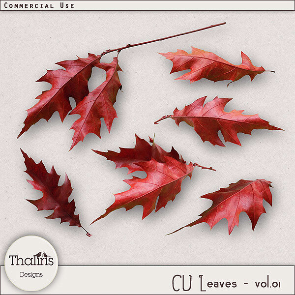 THLD-CU-leaves-vol1-pv600