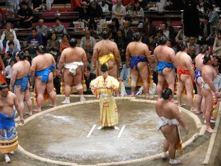sumo - mai 2012 012