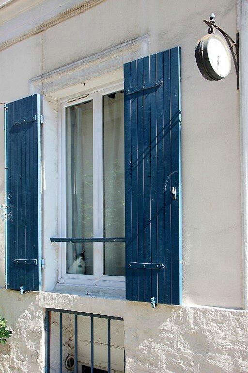 6-Paris, chat (rue Crémieux)_2166