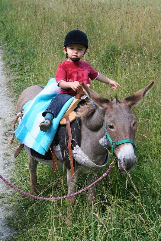 Tour d'âne