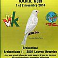 Exposition de canaris en belgique