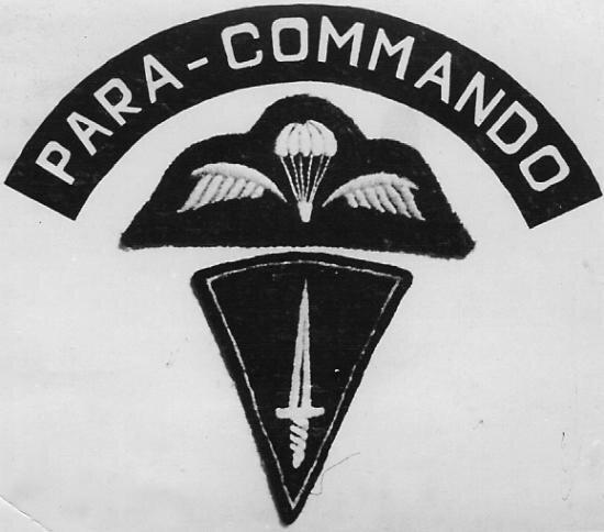 Para Commando