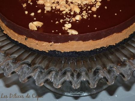 Chocolate oreo peanut butter pie2