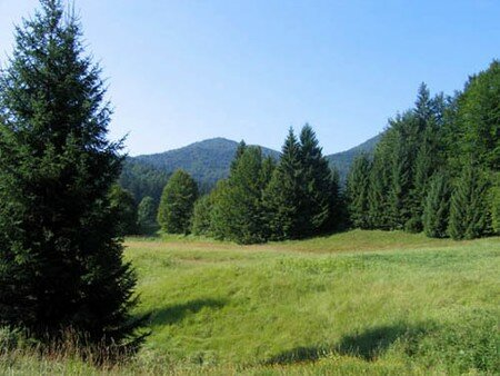 Risnjak_Parc_national_02