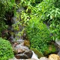 cascades Nepal 272