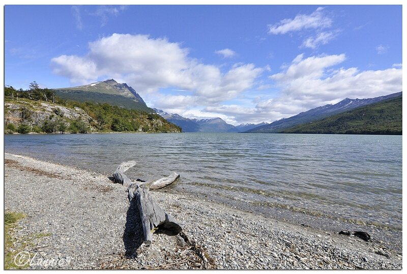 _Argentine_266_Ushuaia_parc_Tierra_del_Fuego_lago_Roca