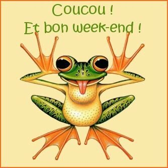 coucou_20grenouille