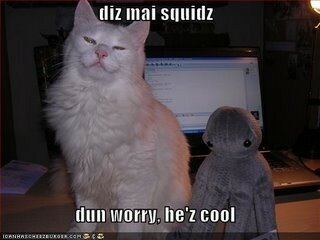 funny_pictures_cat_squidz