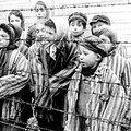1941 - joseph mengele cherche comment doubler la natalité des allemandes