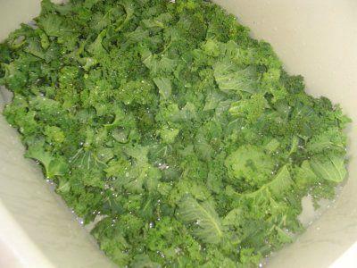 la pot 233 e au chou vert fris 233 la cuisine de norbert
