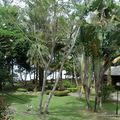 Damai resort (2)