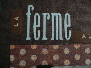 Ferme_aux_tortues_detail1