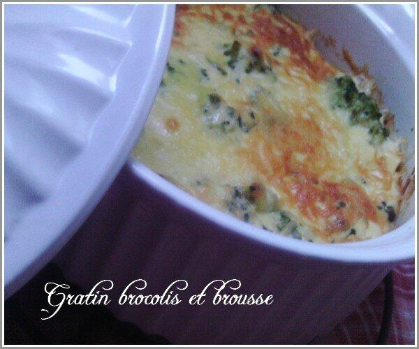 gratin-brocolis-et-brousse-2