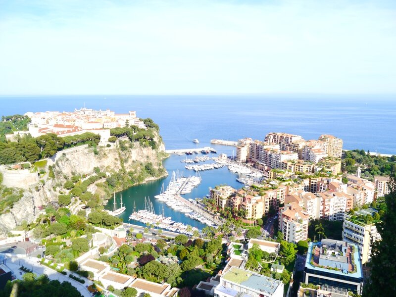 Jardin exotique Monaco (175)