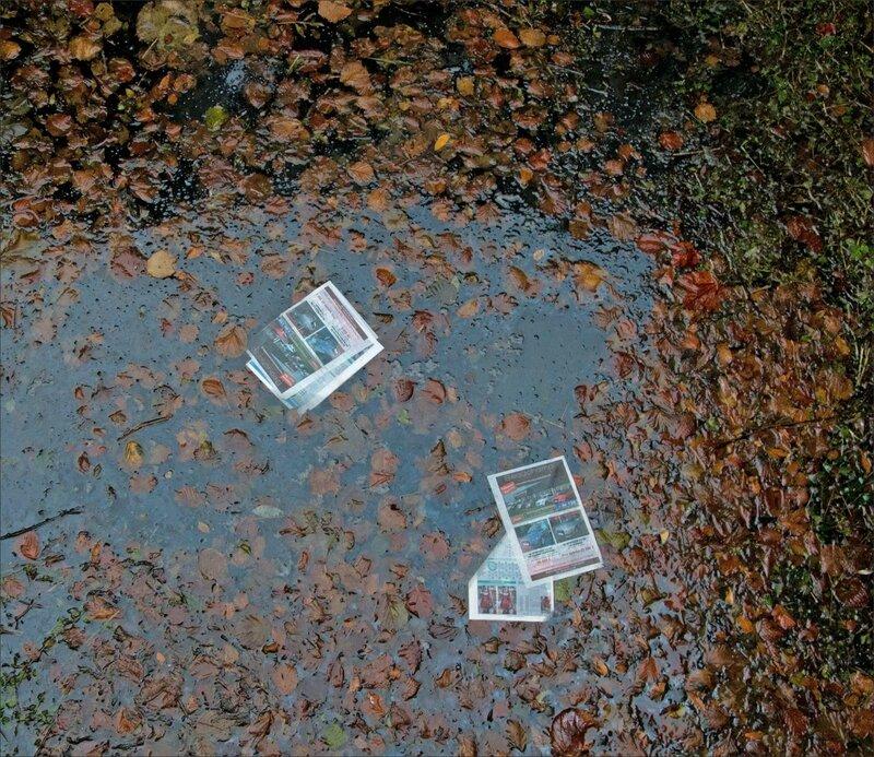 feuilles journaux feuilles arbres eau 101115 1