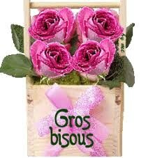 gros bisous roses