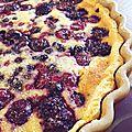Tarte aux fruits rouge pistache