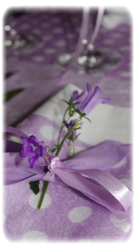 table_mauve_005_modifi__1