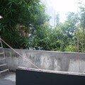 septembre: maçonnerie de la terrasse terminée!