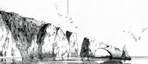 Tohi et Albatros [Christopher] 37731171