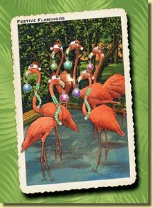 flamingos_pop