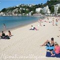 Oriental Bay (Wellington)
